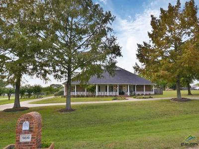 Flint Single Family Home For Sale: 19510 County Road 1332 (Thorn Hill Dr)