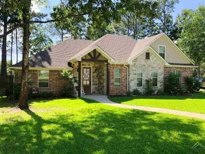 Chandler Single Family Home For Sale: 1001 Millstone Lane