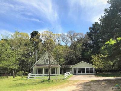 Flint Single Family Home For Sale: 11923 County Road 140