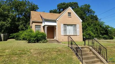 Tyler Single Family Home For Sale: 813 S Kennedy Ave