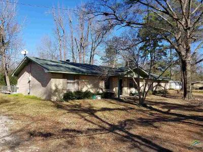 Quitman Single Family Home For Sale: 564 Fm 69