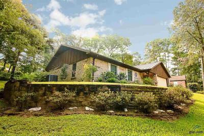 Flint Single Family Home For Sale: 17947 Shady Lane