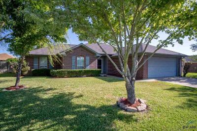Flint Single Family Home For Sale: 11188 Twin Spires Drive