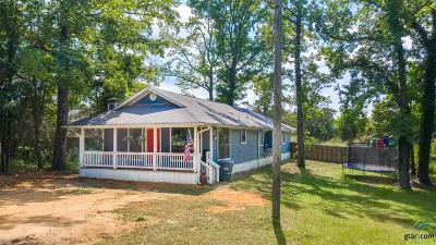 Upshur County Single Family Home For Sale: 1141 N Fm 1002