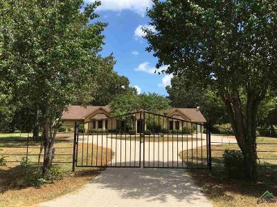 Tyler Single Family Home For Sale: 10780 Hancock Dr