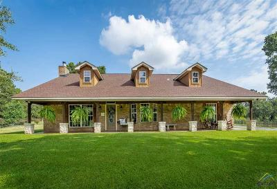 Longview Single Family Home For Sale: 2315 E George Richey Road