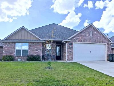Tyler Single Family Home For Sale: 7349 Standing Rock
