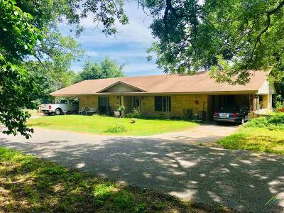 Canton Commercial For Sale: 6001 Forest Ln