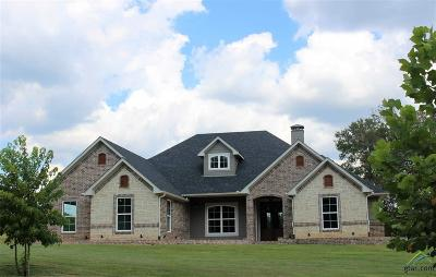 Tyler Single Family Home For Sale: 14860 County Road 496