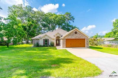 Single Family Home For Sale: 12579 S Hillcreek