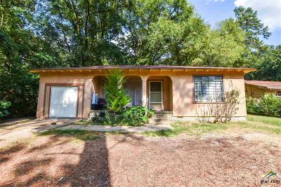 Tyler Single Family Home For Sale: 504 S Parkdale