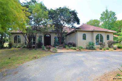 Single Family Home For Sale: 11391 Fm 2868