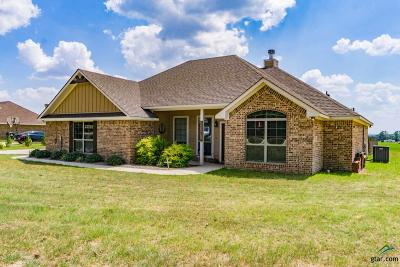 Lindale Single Family Home For Sale: 23267 Fm 1995