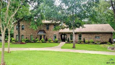 Tyler Single Family Home For Sale: 19517 Oakmeadow Circle