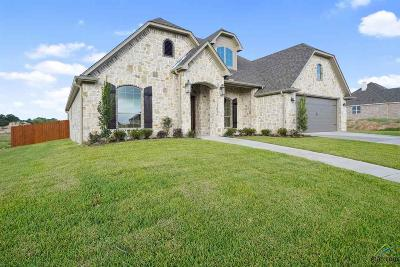 Single Family Home For Sale: 2960 Barton Creek