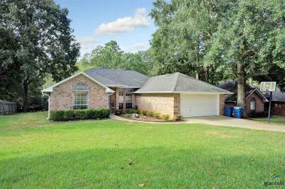 Single Family Home For Sale: 206 Stacy Drive