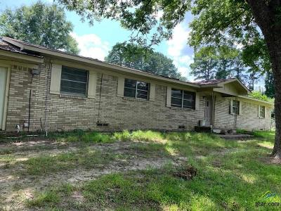Tyler Single Family Home For Sale: 10588 Hwy 64 East