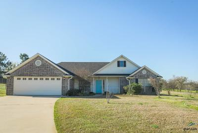 Lindale Single Family Home For Sale: 16041 Hickory Hills Drive