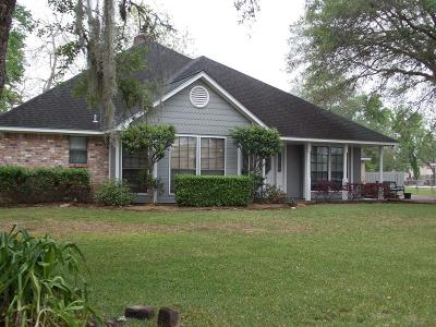 Brazoria Single Family Home For Sale: 2423 County Road 582 A