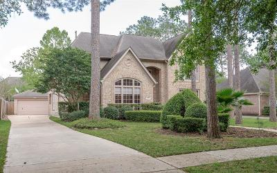 Houston Single Family Home For Sale: 4010 W Pine Brook Way