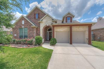 The Woodlands Single Family Home For Sale: 3 Dragon Hill Place