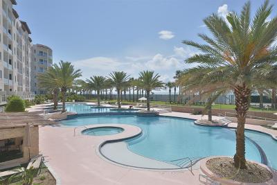Galveston Mid/High-Rise For Sale: 10327 Termini San Luis Pass Road #214