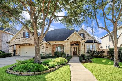 Sugar Land Single Family Home For Sale: 3722 Arundel Gardens Lane