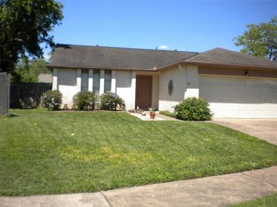 Sugar Land Single Family Home For Sale: 3811 Windmill Street