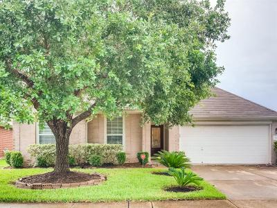 Fort Bend County Single Family Home For Sale: 3915 Dogwood Bough Lane