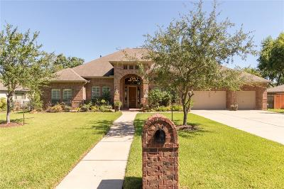 Sugar Land Single Family Home For Sale: 115 Saint Marks Street