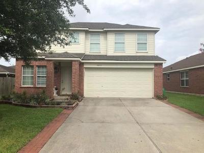Houston Single Family Home For Sale: 16807 Kinney Point Lane