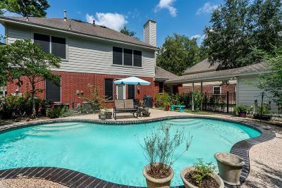 The Woodlands Single Family Home For Sale: 91 E Sterling Pond Circle