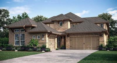 Porter Single Family Home For Sale: 3219 Skylark Valley Trace