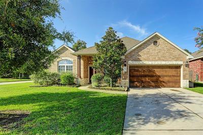 Porter Single Family Home For Sale: 21546 Spear Valley Lane