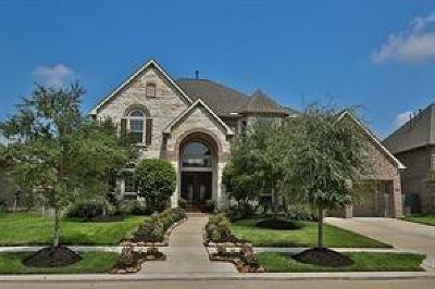Sienna Plantation Single Family Home For Sale: 7119 Angel Falls