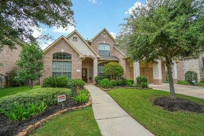 Sugar Land Single Family Home For Sale: 635 Doscher Lane