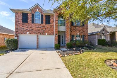 Spring Single Family Home For Sale: 20531 Spring Bluff Lane