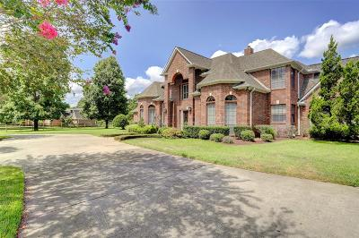 Tomball Single Family Home For Sale: 22503 Holly Creek Trail