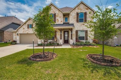 Tomball Single Family Home For Sale: 9115 Lacombe Lane