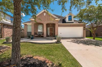League City Single Family Home For Sale: 6157 Cornell Lane