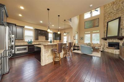 Conroe Single Family Home For Sale: 209 Fallow Buck Court