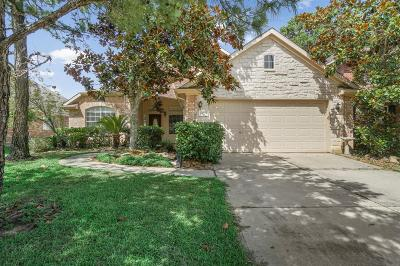 Tomball Single Family Home For Sale: 19114 Northcanyon Drive