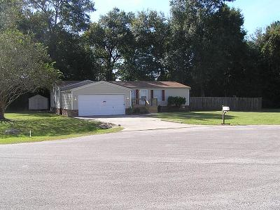 Conroe Single Family Home For Sale: 16528 Bunny Hill Court