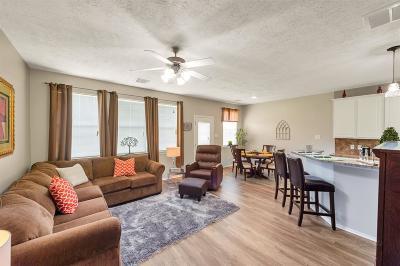 Condo/Townhouse For Sale: 25239 Boulder Bend Lane
