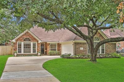 Houston Single Family Home For Sale: 9627 Bavaria Dr Drive