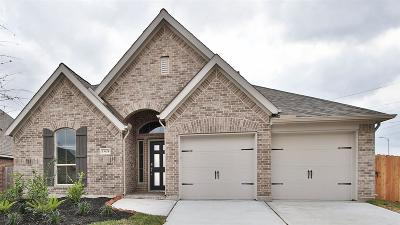 Pearland Single Family Home For Sale: 13624 Canyon Ranch Drive