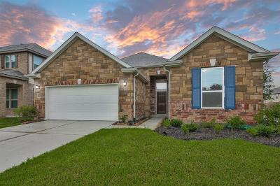 Pearland Single Family Home For Sale: 14103 Harmony Ridge Trail