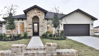Friendswood Single Family Home For Sale: 808 Galloway Mist Lane