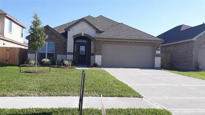 Texas City Single Family Home For Sale: 8717 Explorer Drive