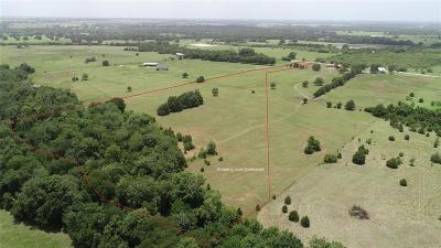 Austin County Farm & Ranch For Sale: Bleiblerville Road